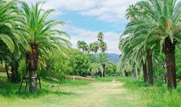 ハワイ公園 約500m(徒歩7分)