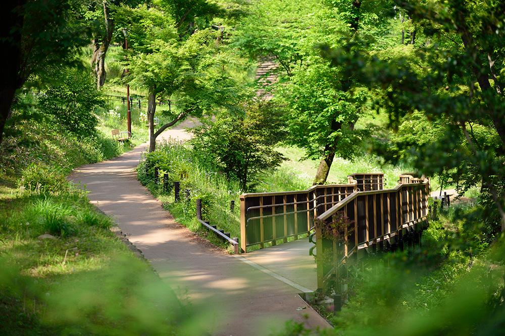 富士森公園 約880m(徒歩11分)