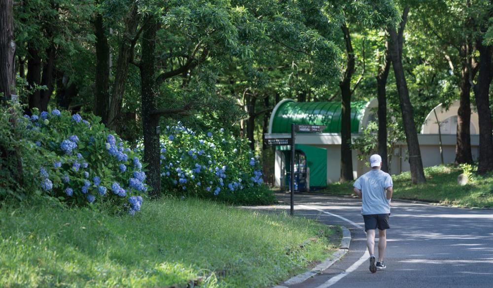 平塚市総合公園 約1,600m(徒歩20分)