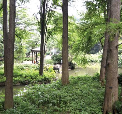 東京都立林試の森公園 [N]約930m(徒歩12分)[S]約850m(徒歩11分)