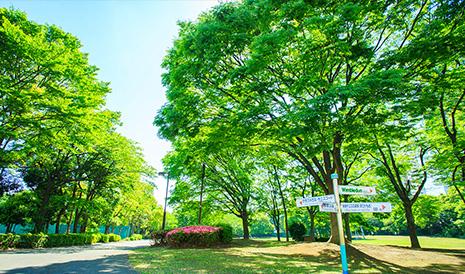 有明テニスの森公園 約240m(徒歩3分)