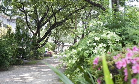 呑川緑道 約210m(徒歩3分)