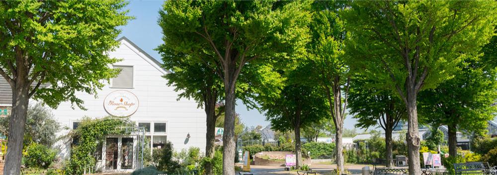 京成バラ園 約1,630m(徒歩21分)