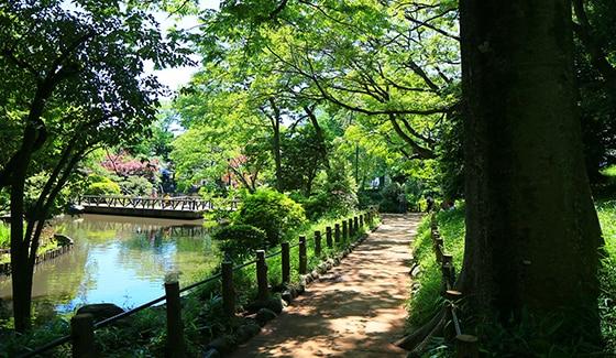 有栖川宮記念公園 約1,280m(徒歩16分)