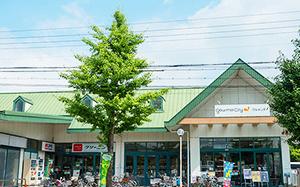グルメシティ嵯峨店 約260m(徒歩4分)