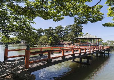 九華公園 約1,210m(徒歩16分)