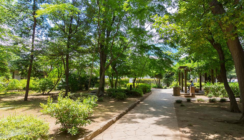 谷津の森公園 約120m(徒歩2分)