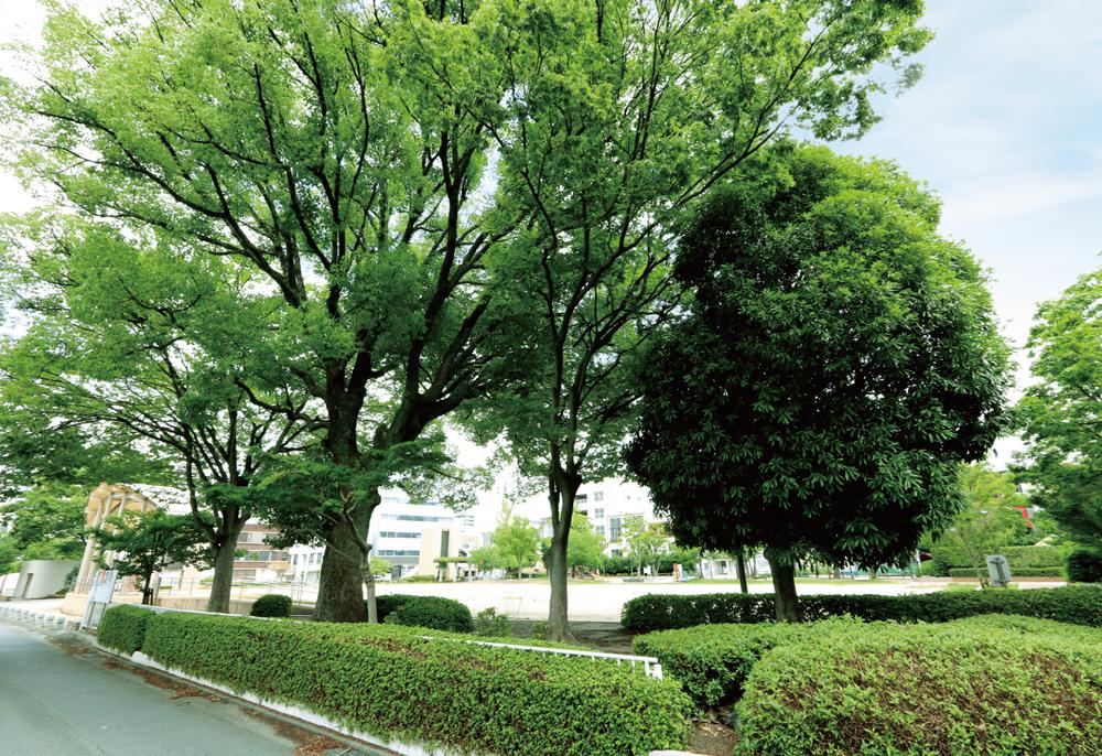 小頭町公園 約450m(徒歩6分)