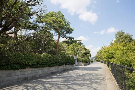 ニテコ池を周遊する道 約340m(徒歩5分)