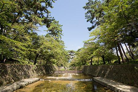 夙川公園 約530m(徒歩7分)