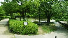 上坂部西公園 約440m(徒歩6分)
