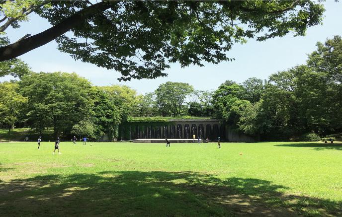 茅ヶ崎中央公園 約50m(徒歩1分)