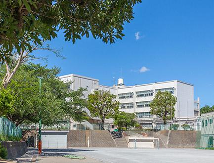 青葉台小学校 約480m
