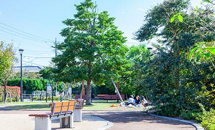調布タフノキ公園 約350m(徒歩5分)