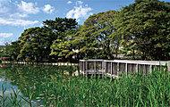 桜小路公園(はす池) 約880m(徒歩11分)