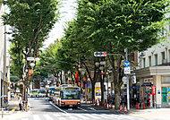 成増南商店街 約30m(徒歩1分)