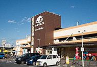 スーパーアルプス日野店 約890m(徒歩12分)