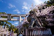 武田神社 約3,160m(徒歩40分)