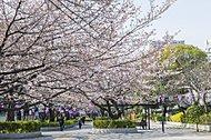 大井水神公園 約1,400m(徒歩18分)