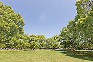篠崎公園A地区 徒歩22分(約1,700m)