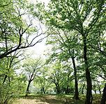 土塔公園 約800m(徒歩10分)