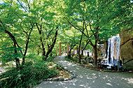 しょうぶ沼公園 約160m(徒歩2分)