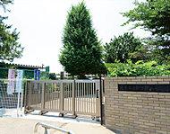 市立朝霞第八小学校 約440m(徒歩6分)
