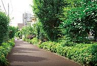 常盤緑道 約150m(徒歩2分)