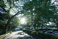 榴岡公園 約800m(徒歩10分)