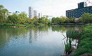 中島公園 約720m(徒歩9分)