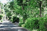 呑川柿の木坂支流緑道 約380m(徒歩5分)