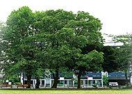 社宮司公園 約260m(徒歩4分)