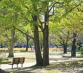 錦糸公園 約1,020m(徒歩13分)