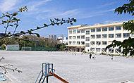 市立新林小学校 約440m(徒歩6分)