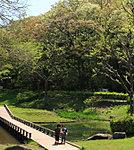 新林公園 約490m(徒歩7分)