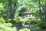 浜田山公園 約640m(徒歩8分)