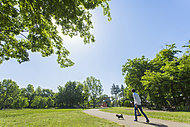 柏の宮公園 約720m(徒歩9分)