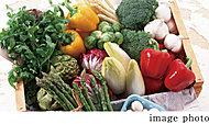 指定のネットスーパーや食品配達会社に注文した商品を宅配ボックスで受け取ることができます。
