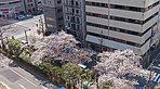 現地9階ベランダより南西方向の眺望(平成29年4月撮影)