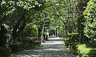 浜町緑道 約40m(徒歩1分)