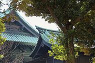 湯島聖堂 約560m(徒歩7分)