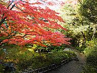 池田山公園 約780m(徒歩10分)