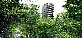 この地の豊かな歴史と、かけがえのない大宮の資産である氷川参道を継承しながら、次代にふさわしい邸宅風景を創造。