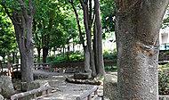 幡ヶ谷第三公園 約120m(徒歩2分)