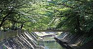 善福寺川緑地公園 約3.6km