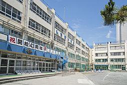江東区立南陽小学校 約780m(徒歩10分)