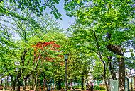 西日暮里公園 約450m(徒歩6分)