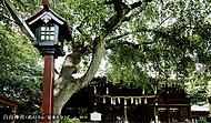 白山神社 約610m(徒歩8分)