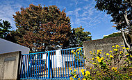 山野小学校 約600m(徒歩8分)