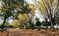 区立総合運動場(大蔵運動公園) 約1,130m(徒歩15分)